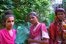 Eunuchové čili kastráti jsou velmi zajímavým kulturně sociálním fenoménem jižní Asie už po tisíce let. V Indii jich žije kolem půl milionu