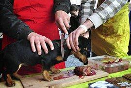 Prodej vánočních psů v roce 2014