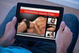 Sociální sítě, videa a porno. Podívejte se na nejhledanější slova roku 2016 na internetu