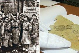 Unikátní dokumenty napsané lidskou močí odhalují nacistické pokusy na ženách v Ravensbrücku