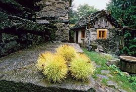 Kaštany se suší v nízkých kamenných domcích, zvaných grà.