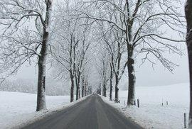 Do Česka se vrátila zima