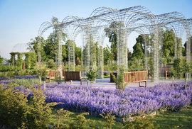 Úchvatné zahrady v Lednici. Vyberte si, do které zajdete: do Stříbrné, Anglické květinové, Zahrady travin nebo do Vodní?