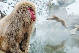 Onseny: Japonské přírodní lázně
