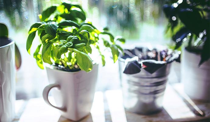 Ve výběru květináče se neomezujte a vyberte nádobu, která vašemu balkónu dodá styl.