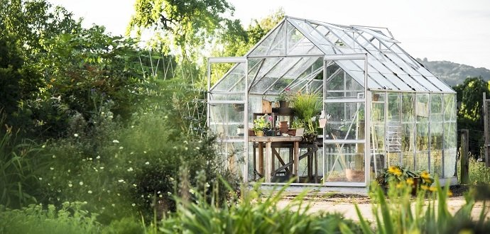 Práce, která přinese plody: 7 kroků k úrodnému skleníku