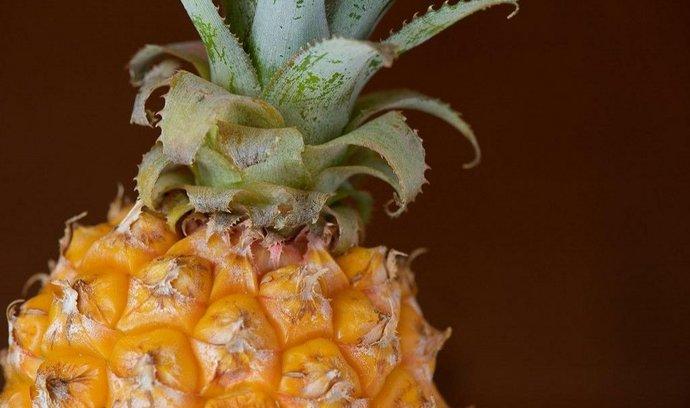 Ananas, ilustrační foto
