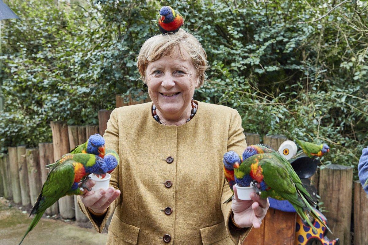 Horší než voliči. Papoušci nedali kancléřce chvíli pokoj.