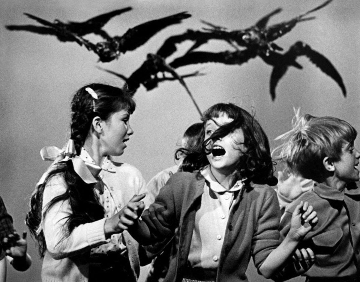1963: Ptáci, Slavný horor od Alfreda Hitchcocka.