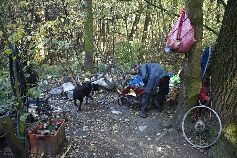 Bezdomovec Miky (40) s jedním ze svých psů.