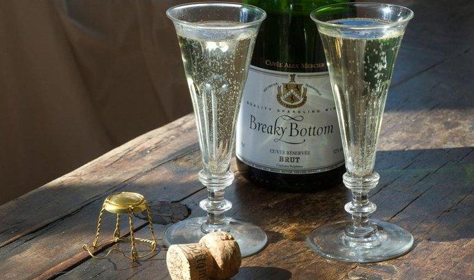 Britští vinaři našli mezeru na trhu šumivých vín, která představují třetinu národní produkce.