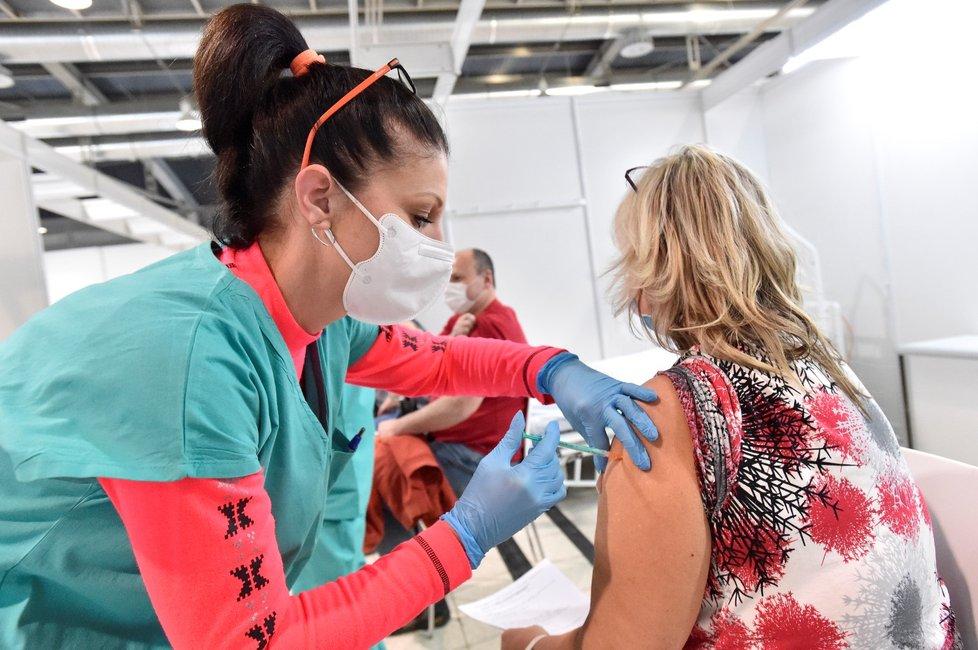 Očkování v Brně na výstavišti
