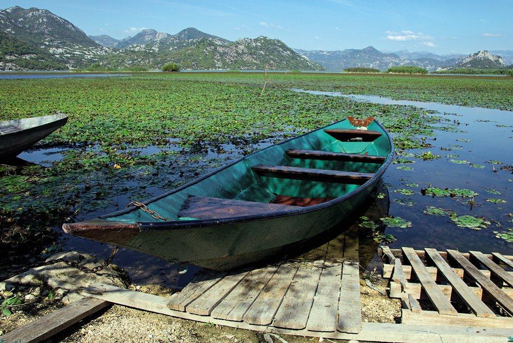 Skadarské jezero je napájeno podzemními krasovými prameny a je ornitologickým a rybářským rájem