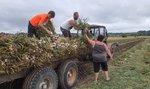 Soumrak zemědělců. Počet těch plně zaměstnaných klesl za dvě dekády o více než 45 procent