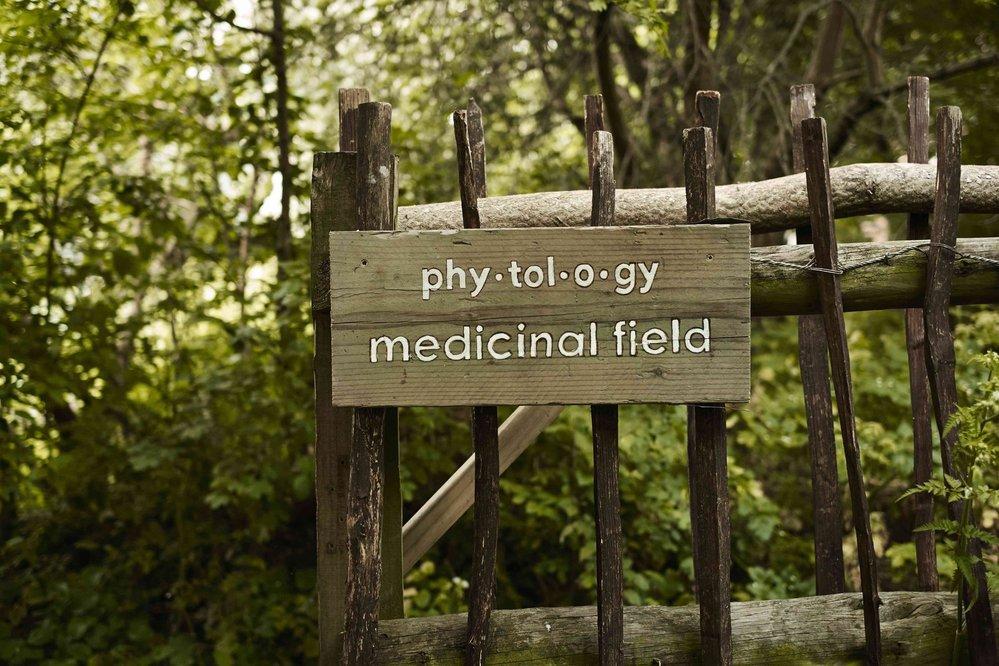 Zahrada Phytology, londýn