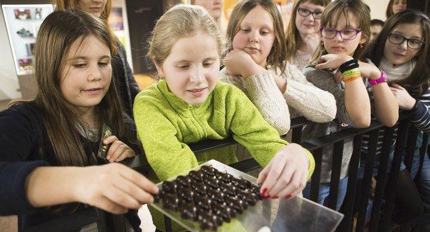 Výherci soutěže o vstupenky do Muzea čokolády Chocotopia a Muzea voskových figurín
