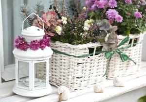 Chryzantémy můžete zkombinovat s různými květinami. Vytvoříte tak působivé aranže, které vám bude každá sousedka závidět.