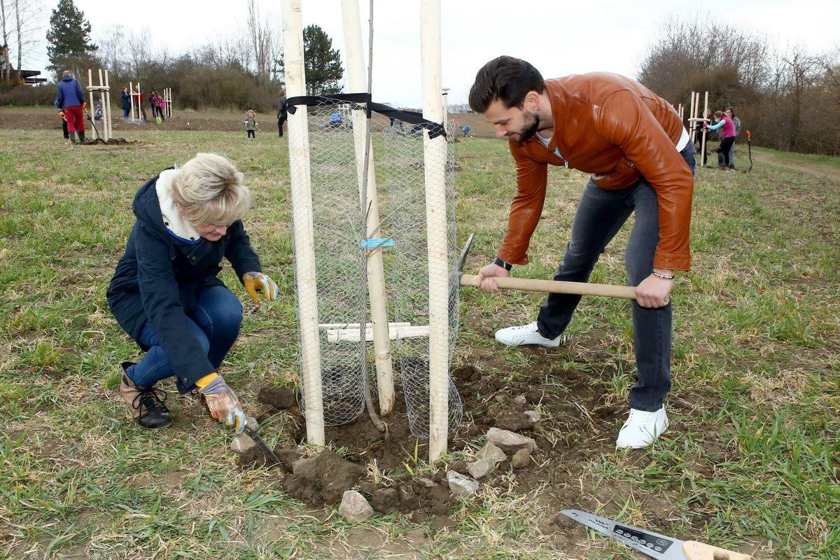 David Kremeň a Zuzana Bubílková na akci v Řeporyjích zasadili strom