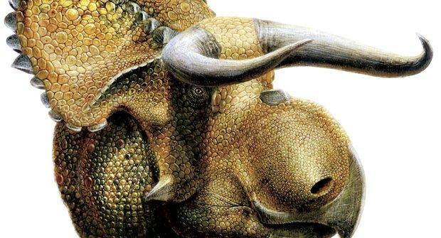 Nový objev: Nosatý dinosaurus
