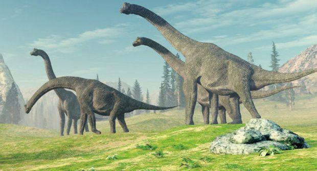 Rok dinosaura: Měl 372 dní!