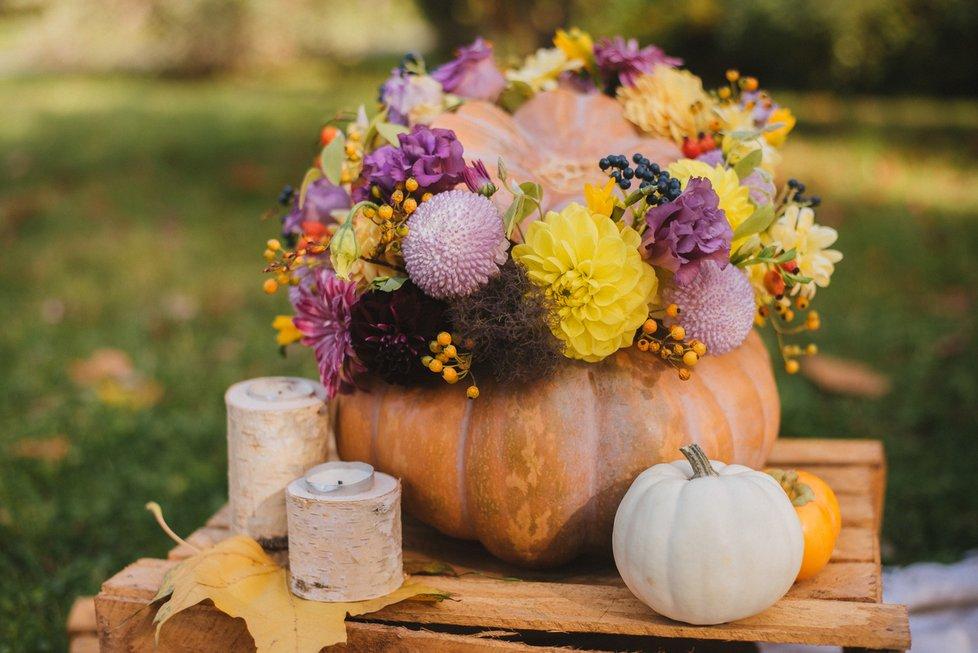 Dýňové aranžmá hravě zvládnete. Rozpůlenou a vydlabanou dýni můžete použít jako květináč pro podzimní květiny.