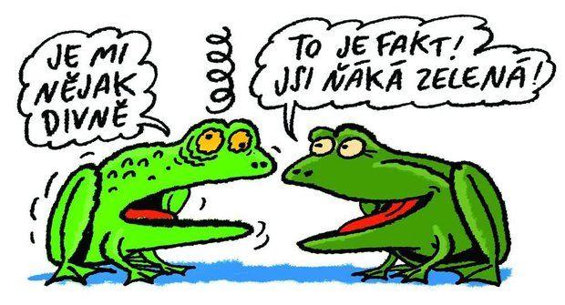 Džouk týdne: Žábě je nějak blbě (nebo divně nebo co)
