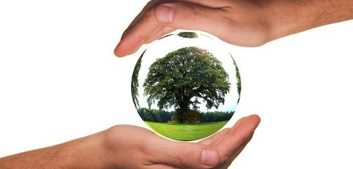 11 tipů pro ekologickou domácnost