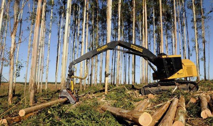 Firma Less & Forest nyní řeší, jak trefit optimální objem prací v lesích tak, aby je efektivně zajistila.