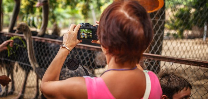 Fotograf radí: jak udělat krásné fotky zvířat v ZOO