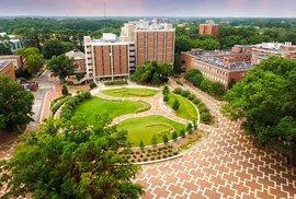 Ráj ve městě! Jak vypadá americký univerzitní kampus?