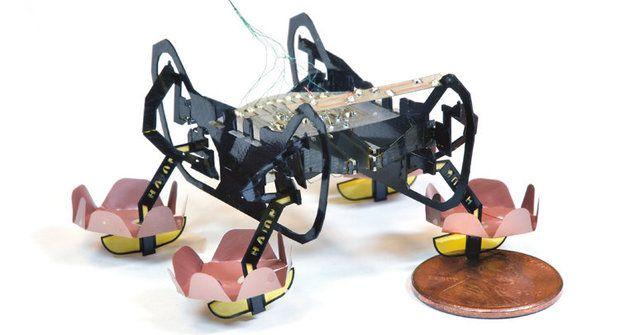 Vodní běžec: Robotický šváb HAMR