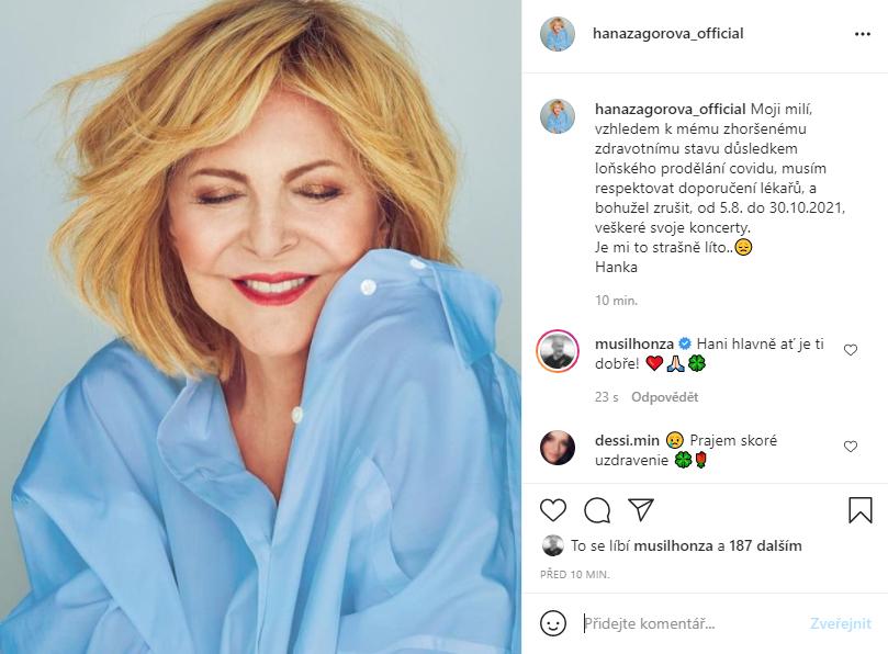 Hana Zagorová ruší plánované koncerty.