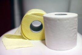 Co předcházelo toaletnímu papíru? Jemný písek, houba namočená voctě i mláďata