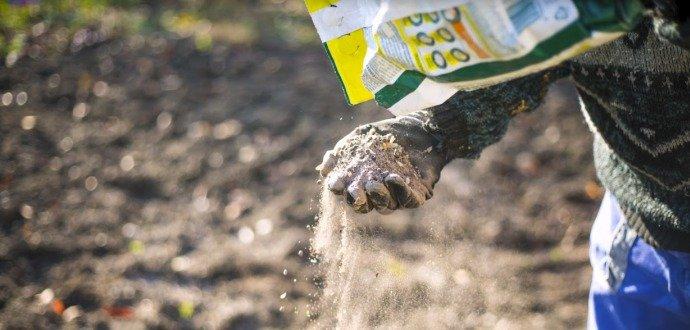 Jarní hnojení zahrady: pozor na čerstvý hnůj, zničil by vám úrodu