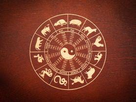 Horoskop na další týden: Koho čekají chvíle blaha a kdo by si měl dát pozor na podvodné praktiky?