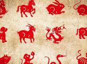Horoskop na tento týden: Co pro vás připravily hvězdy?
