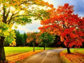 Horoskop pro podzimní rovnodennost: Co vás čeká podle astroložky Gričové?