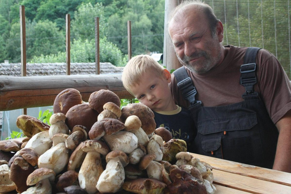 Pavel Polomis se na houby vydal s vnukem Románkem. Našli kopu praváků.