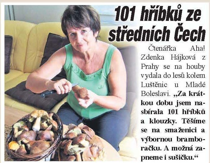 101 hříbků ze středních Čech