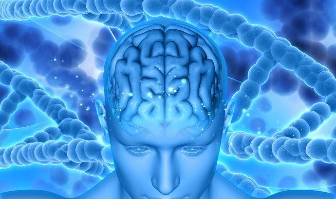 Vědci odhalili 40 nových genů spojených s inteligencí. Ilustrační foto.