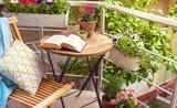Trendy v bydlení pro rok 2021? Přírodní barvy a zařízený balkon