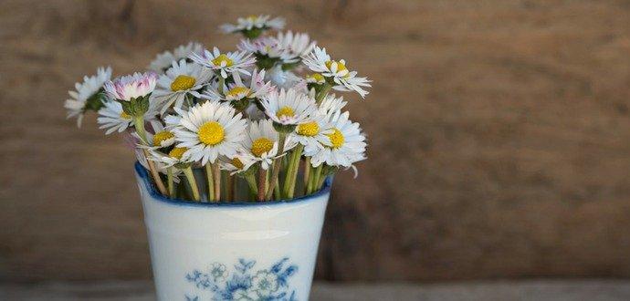 Vyčarujte si doma jaro