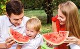 5 tipov, vďaka ktorým sa jedlo nepokazí ani v horúčavách