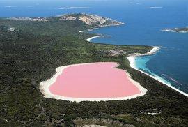 Netradiční podívaná: Růžová jezera napříč kontinenty