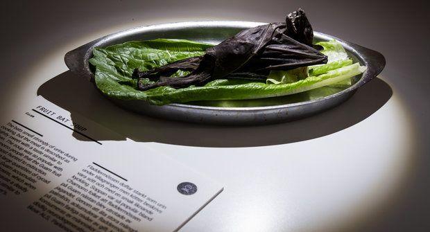 Okno do světa: Smažená kobylka nebo morče? Muzeum nechutností a jídelníček budoucnosti