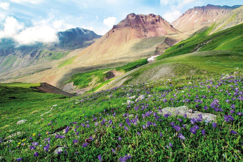 Rozkvetlý Kavkaz