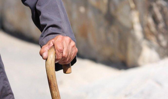 K vytvoření druhého pilíře důchodového systému a úpravě dosavadního důchodového připojištění už zbývá jen souhlas obou komor parlamentu