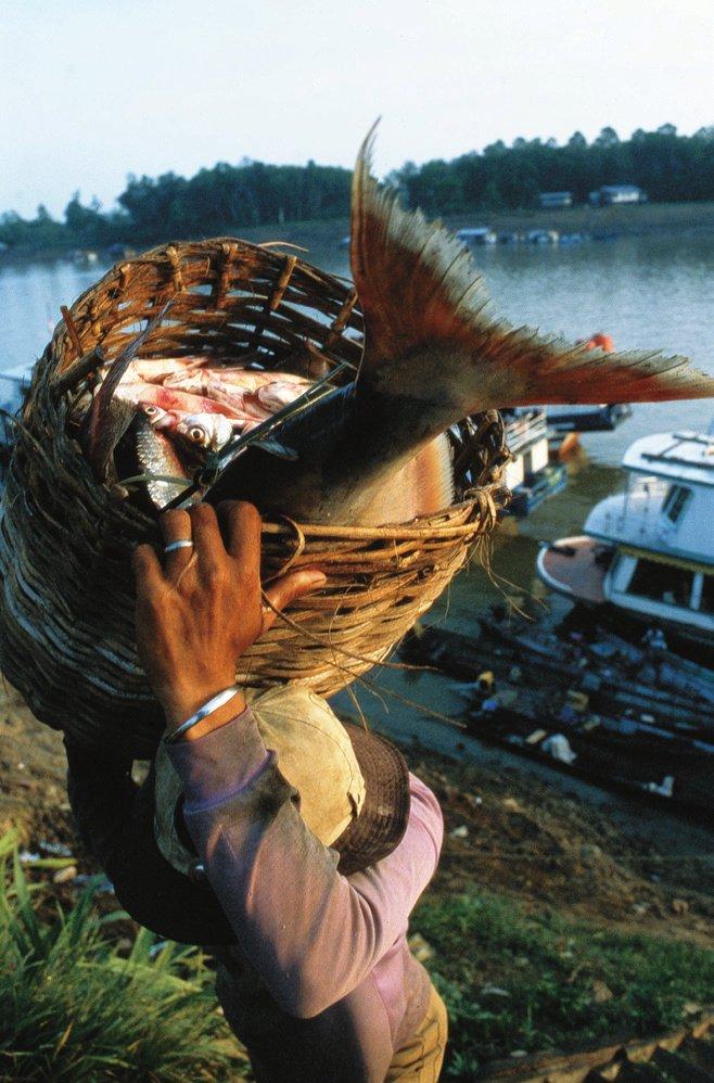 Křížem krážem po ostrově Kalimantan: Než zahouká parník, dejte si patina