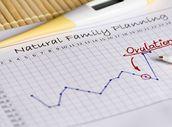 Kalkulačka ovulace a plodných dnů: Vypočítejte si, kdy jste nejplodnější