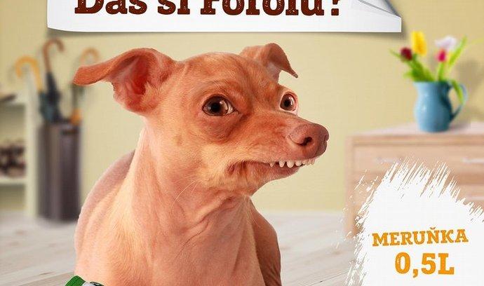 Kofola anebo Fofola?